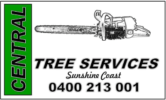 CV TREES – Sunshine Coast Tree Removals