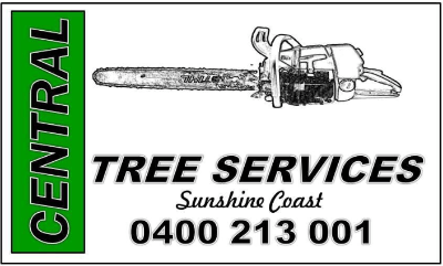 Tree Removals Sunshine Coast 14