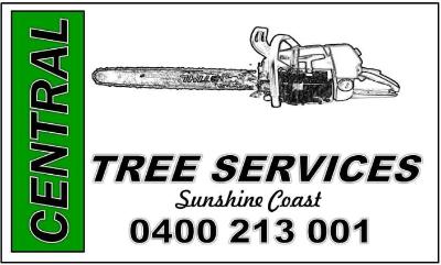 Tree Removals Sunshine Coast 14