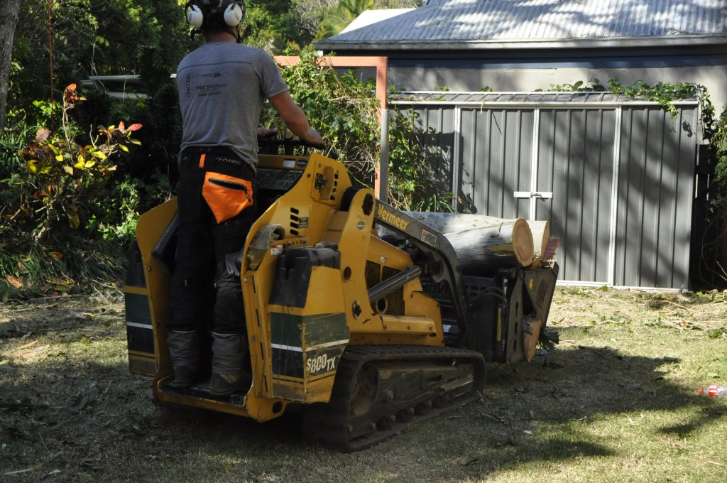 Tree Removals Sunshine Coast 9